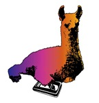 2002: Color Llama