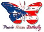 Puerto Rican Butterfly