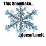 No melt snowflake