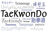 Taekwondo 18