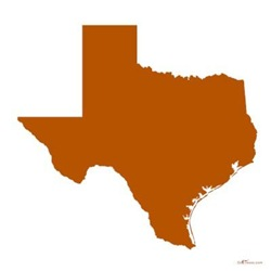 Burnt Orange Texas Outline