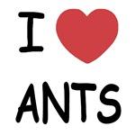 I heart ants