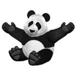 Fluffy Panda Bear