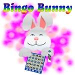Bingo Bunny