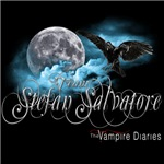 Team Stefan Salvatore The Vampire Diaries Raven Mo