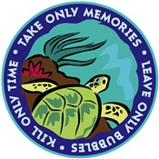 Take Only Memories (turtle)