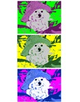 Bichon magnets,mousepads, journals and mugs
