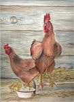 Granny's Chickens