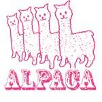Alpaca4: Pink Line