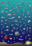 100 fish of everything