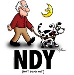 NDY- Dog Walker