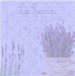 La France Lavender