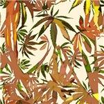 2014 Cannabis Designs