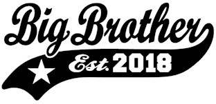 Big Brother Est. 2018 t-shirts