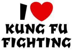 I Love Kung Fu Fighting t-shirt