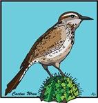 BIRDS and WILDLIFE
