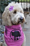 DRC LOGO WEAR & PRODUCTS - FOR DOGS