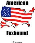 American Foxhound