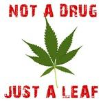 Pot Not a Drug Just a Leaf Says Arnold