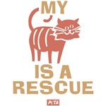 My Cat Is a Rescue
