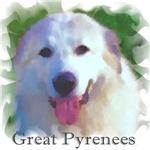 Great Pyrenees Portrait