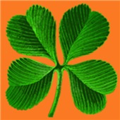 Lucky 4-Leaf Clover T-shirts
