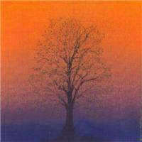07.spring equinox tree..