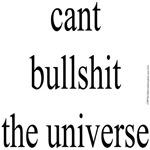 354. cant bullshit the universe..