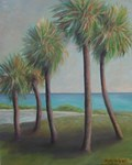 FLAGLER BEACH PALMS
