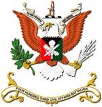 Army - Regimental Colors - 403rd Civil Affairs Bn