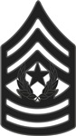 Army - Pin-On - CSM