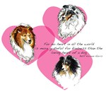 Sheltie Hearts