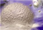 Lunar Texture