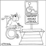 Accessible Litter Box