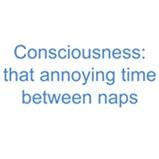 Napping Humor
