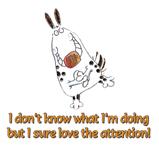 I love attention!