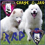 Thier RAP - Chase & Jag