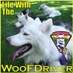 Life With The WooFDriver
