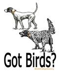 Got Birds?