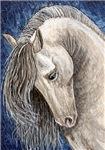 Grey Stallion