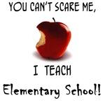 No scare elementary school teacher