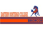 Eastern Oostergo College Broncos Stripes