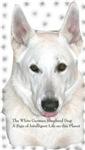 White German Shepherd Dog - A sign of intelligent