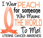 Means World To Me 1 Uterine Cancer Shirts
