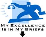 Lawyer's Briefs