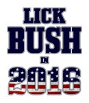 Lick Bush in 2016