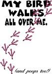 My Bird Walks...