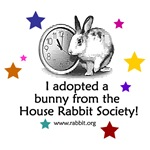 I adopted a bunny!