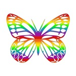 Rainbow Butterfly T-Shirts & Gifts