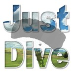 Just Dive